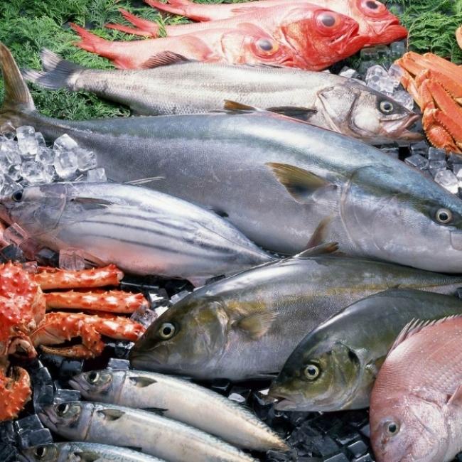 Россия в 2018 году увеличила экспорт рыбы и морепродуктов на 4 %